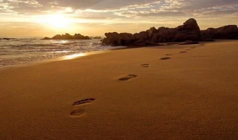 footprints1