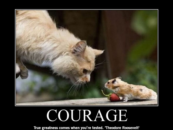 free-poster-y64qsz0bh0-COURAGE