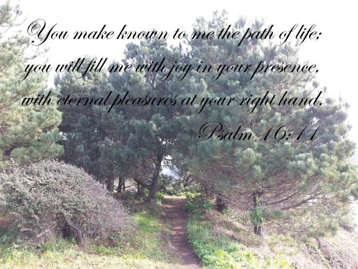 psalm 16.11